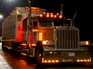 Peterbilt-Trucks-Night-Lights